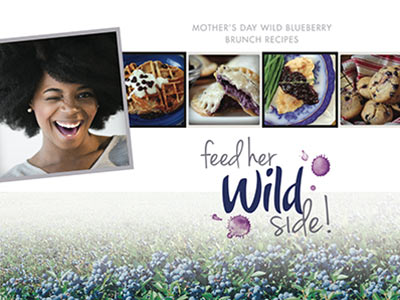 feed-her-wild-side-cover