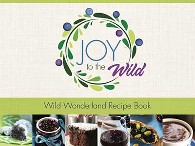 joy-to-the-wild-cover
