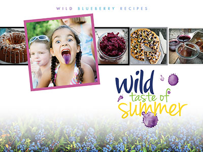 Wild Taste of Summer recipe book