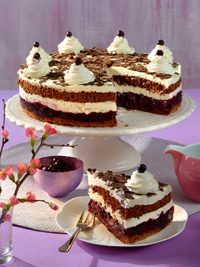 Black Forest Wild Blueberry Gateau Picture