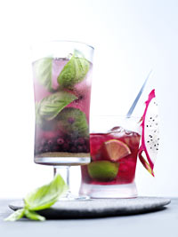 Wild Blueberry Caipirinha Picture