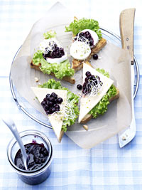 Cheese Toasts with Savory Wild Blueberry Sauce Picture