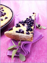 Wild Blueberry Cheesecake Tart with Nut Crust Picture