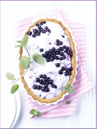 Wild Blueberry Lime Chiffon Tart Picture