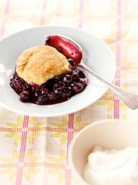 Wild Blueberry Cobbler With Buttermilk Biscuits Picture