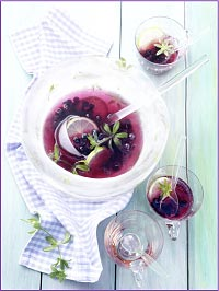 Wild Blueberry Woodruff Lime Punch Picture