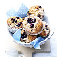 Wild Blueberry Oat Muffins Picture