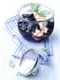 Creamy Low Fat (light) Rice Pudding with Wild Blueberry Sauce Picture