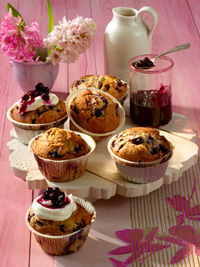 Wild Blueberry Sour Cream Muffins Picture