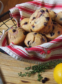Wild Blueberry Corn Muffins with Meyer Lemon and Thyme Curd