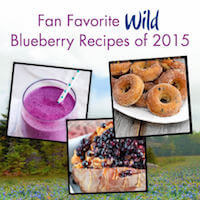 Fan Favorite Wild Blueberry Recipes