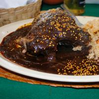 Wild Blueberry Chocolate Chicken Mole Picture