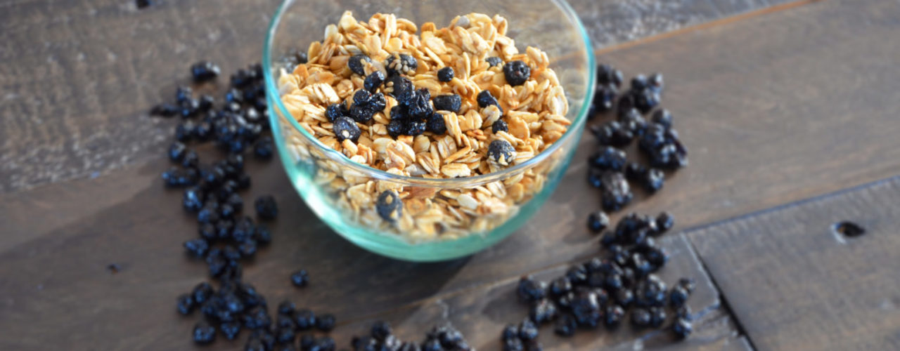 Dried Wild Blueberry and Almond Granola