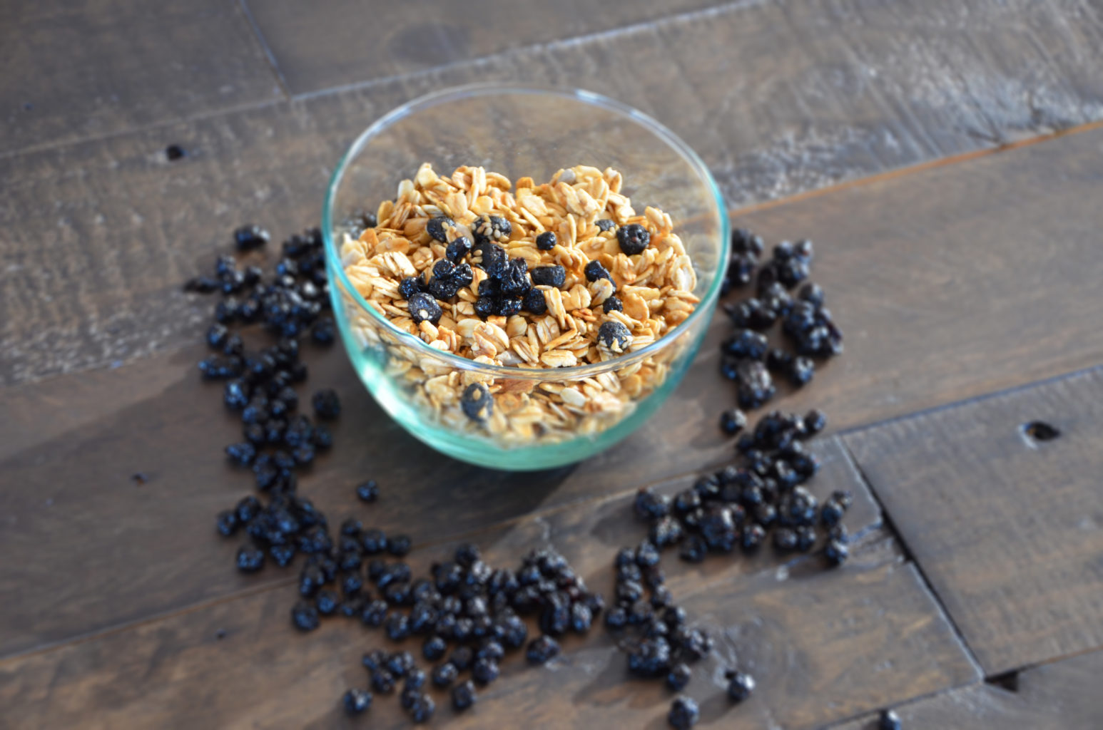 Dried Wild Blueberry and Almond Granola Picture
