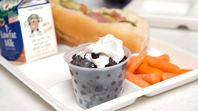 Wild Blueberry Fruit Cup