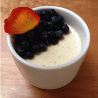 David Levi's Seaweed & Wild Blueberry Panna Cotta Picture