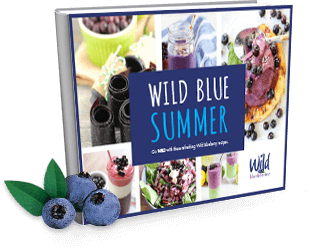 Wild Your Summer Recipe Book Cover