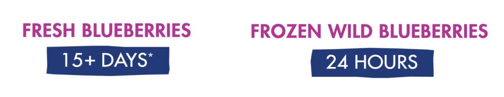 Frozen Is Fresher Infographic Snapshot